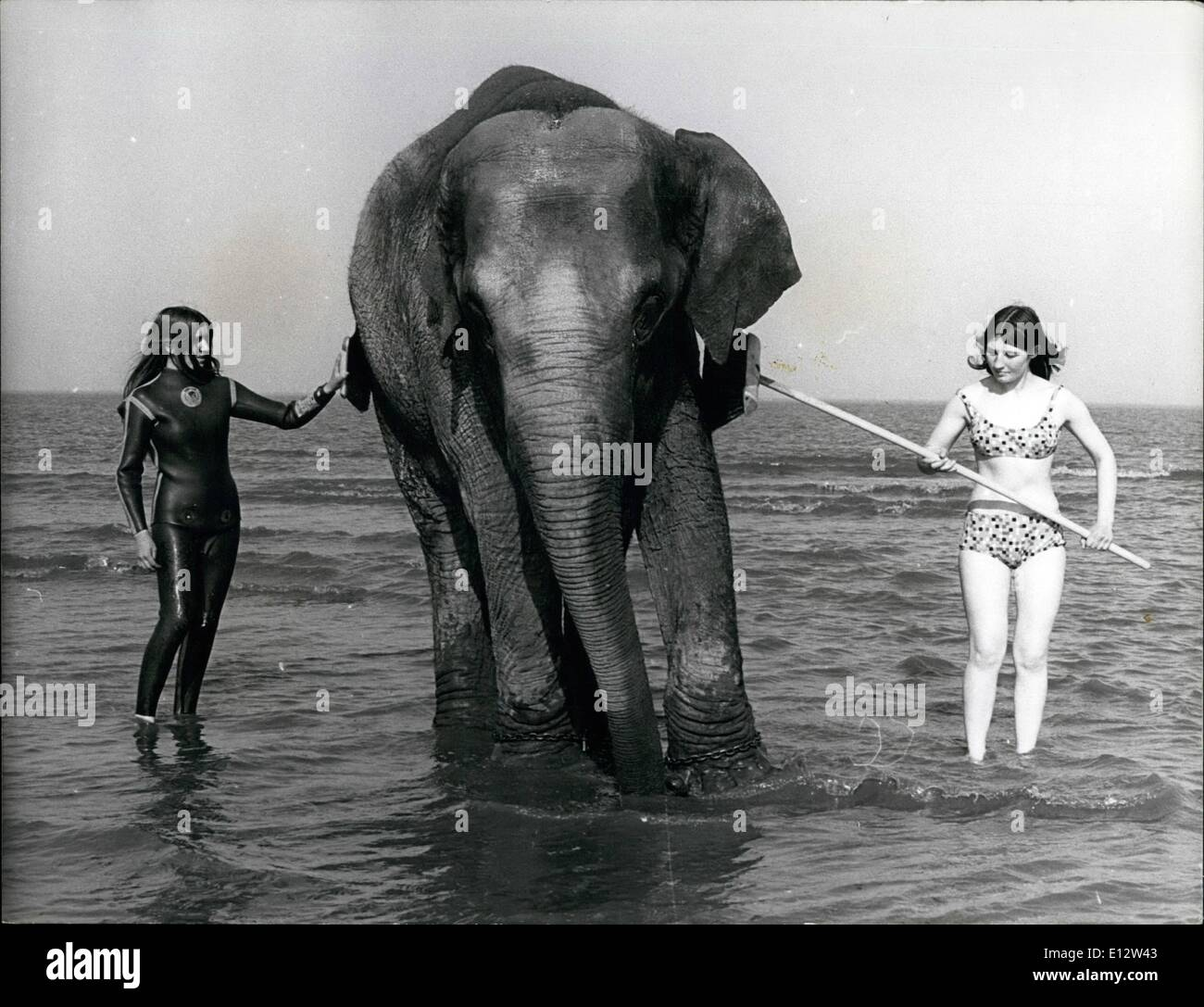 Feb. 25, 2012 - Tanya, the elephant gets her regular weekly scrub down from Linda Burley, 16 (left) and Denise Hunwicks. - Stock Image