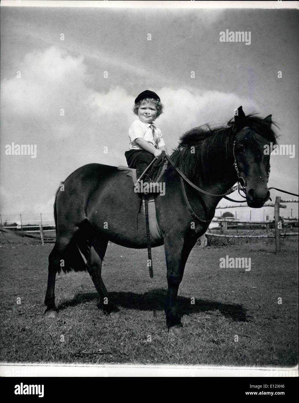 Feb. 25, 2012 - Little Martin Brierley sits his pony like a veteran. He even stayed ''glued'' to his saddle when the pony reared once. Curly haired Martin Wins riding trophies at the age of two: It's not very long ago that 2-year old Martin Brierley learned to walk and already he has won a couple of rosettes for his performances in gymkhanas near his home at Salisbury Road, Worthing, Sussex. Cuarly haired Martin has been riding since he was 18 months old and is the youngest member of the Crawley and Horsham Branch of the Pony Club - Stock Image