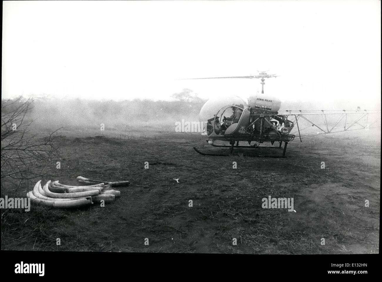 Feb. 26, 2012 - Govt. against poachers, Tsavo Natl. Pk., Kenya. The police Air Wing helicopter loaned to the National Parks takes off on a routine mission. - Stock Image