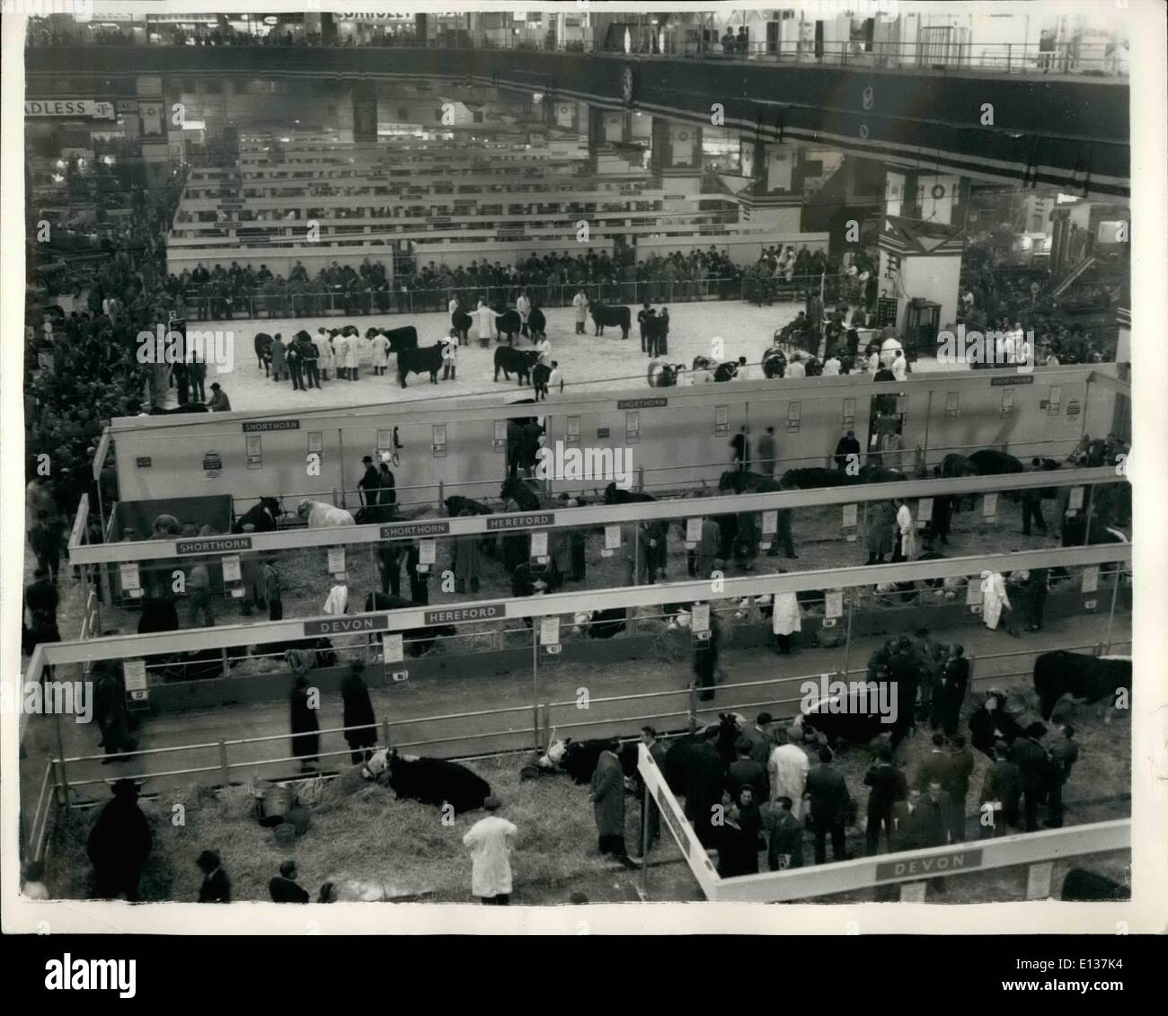 Feb. 29, 2012 - Opening of the Smithfield Show. General view: Photo shows General view after the opening of the - Stock Image