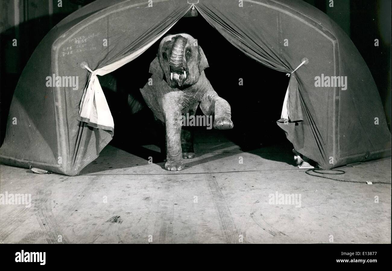 Feb. 29, 2012 - Can An Elephant Blow Up A Tent:The bay elephant finds the new type tent quite to his liking. It Stock Photo