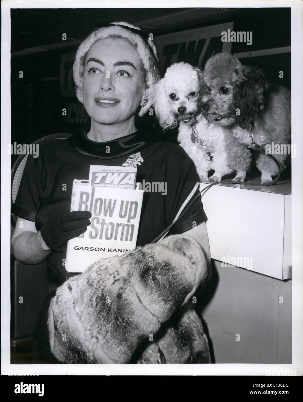 Feb. 29, 2012 - Glamorous Joan Crawford, elegantly clad in Chinchilla, and her ever present poodles. Grace the Cameramen's lens - Stock Image
