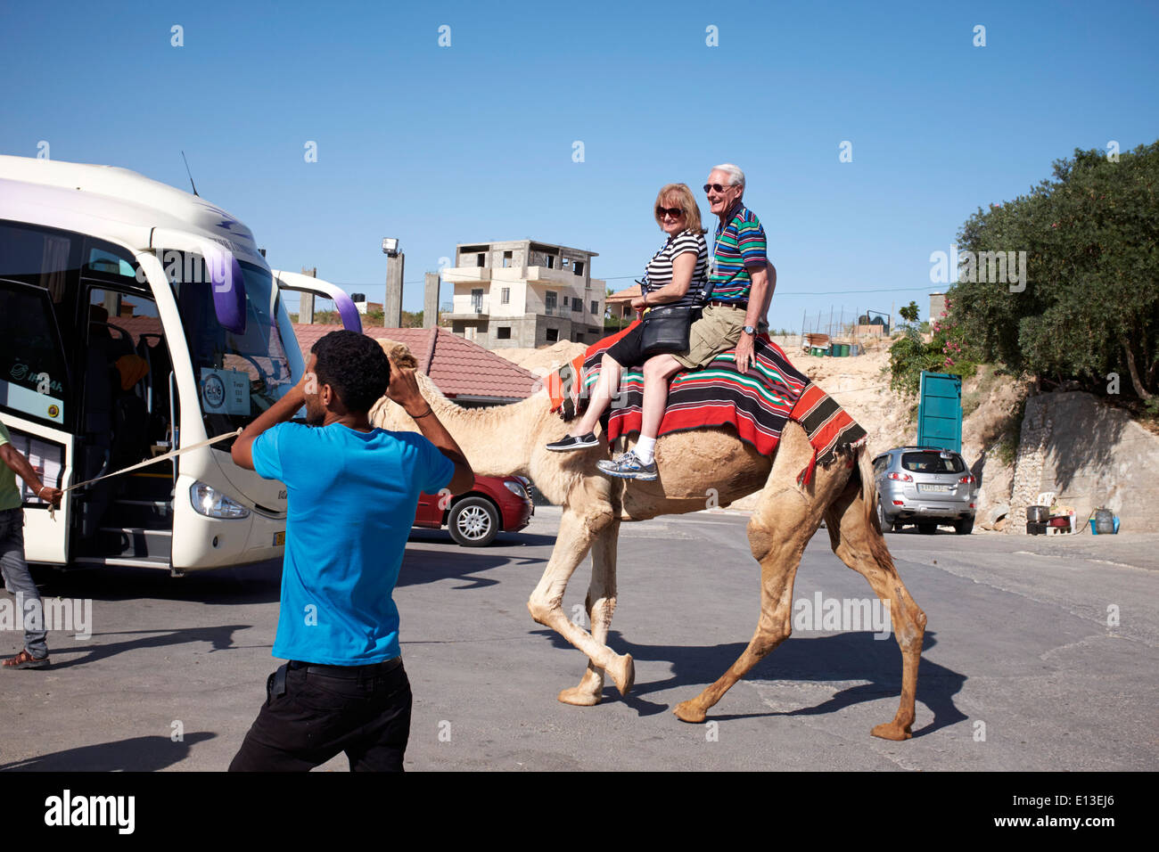 A Couple on a camel ride in Jericho, Israel, West Bank - Stock Image