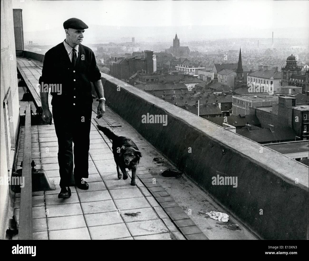 Mar. 27, 2012 - A Penthouse Kennel for Britian's Top Doggie: Even the dog with the longest pedigree in Britain is unlikely to challenge four year old mongrel Pepe for the has a kennel 100 feet above the streets of Teeside on the roof of skyscraper. Pepe moved up on top w - Stock Image