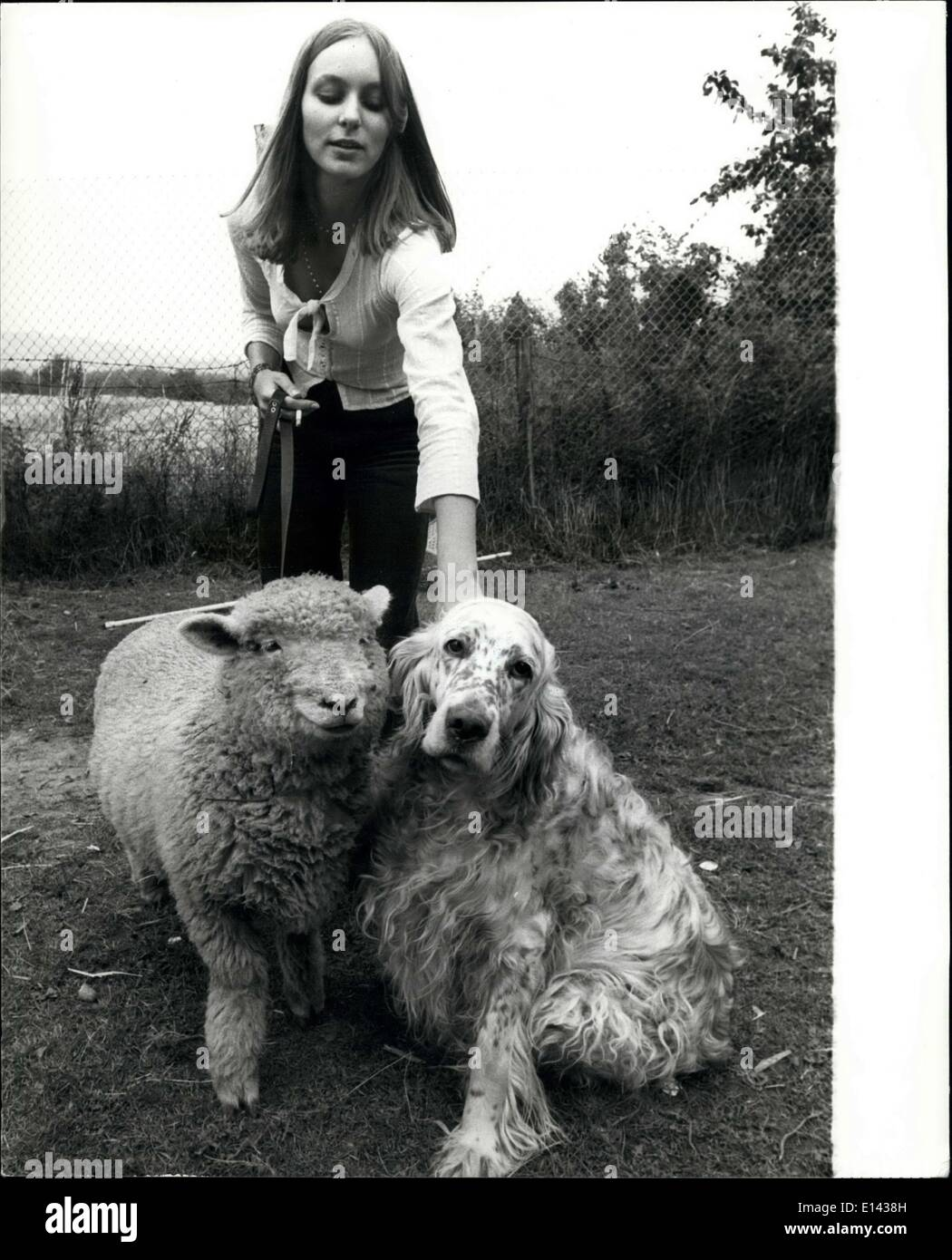Mar. 31, 2012 - Carilyn had a little lamb: people may stare, but Carilyn oddy of otford, Kent, doesn't think it's unusual to take her pet sheep, Victoria, out for walks along with her dog star. Neither do star or Victoria. They get on famously, and even travel with the 19-year-old teacher training student by car. - Stock Image