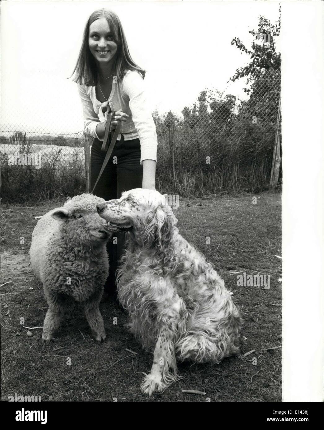 Mar. 31, 2012 - Carilyn had a little lamb: people may stare, but Carilyn oddy of otford, Kent, doesn't think it's unusual to take her pet sheep, Victoria, out for walks along with her dog star. Neither do star or Victoria. They get on famously, and even travel with the 19-year-old teacher training student by car. All photos by Cathy lehrfield. cheek to cheek with their mistress Carilyn are star and Victoria. - Stock Image