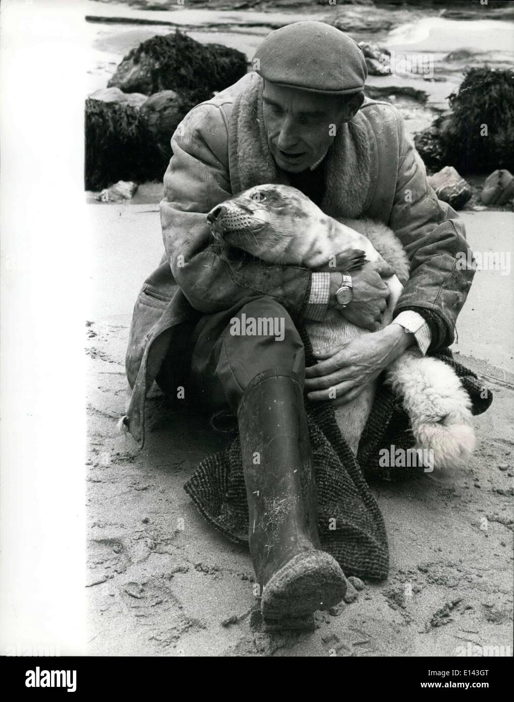 Mar. 31, 2012 - The man who saves the seas : instrumental in the fight to save the lives of hundred of Bab seals washed up on the coasts of Cornwall, is 42 year old welsh cafe proprietor ken Jones, of st. Agnes. ken first became interested in seals in 1961, when he resound a sick baby seel, receiving much publicity in the local press when another young seal was washed up, ken was asked to look after it - end in a short time it was healthy and released and when one of the seals recovered , but was found to have severe lung damage, ken decided there was only one thing for it - he dug a pond in - Stock Image