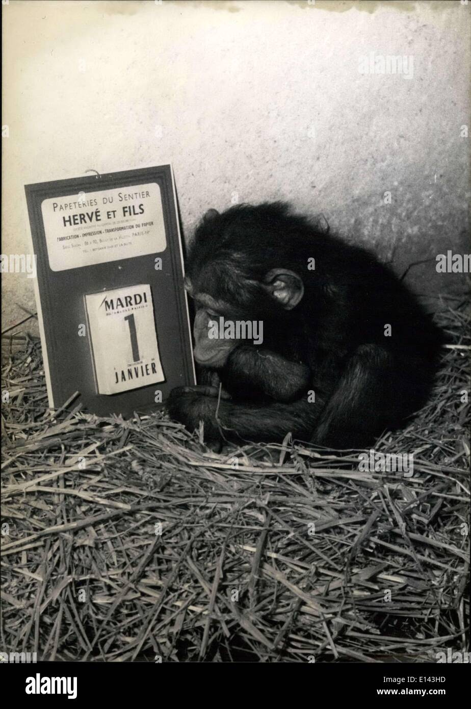 Mar. 31, 2012 - What's In Store For US In 1957?: The chimpanze of the Vincennes Zoo seems to wonder in front of the New Camender. - Stock Image