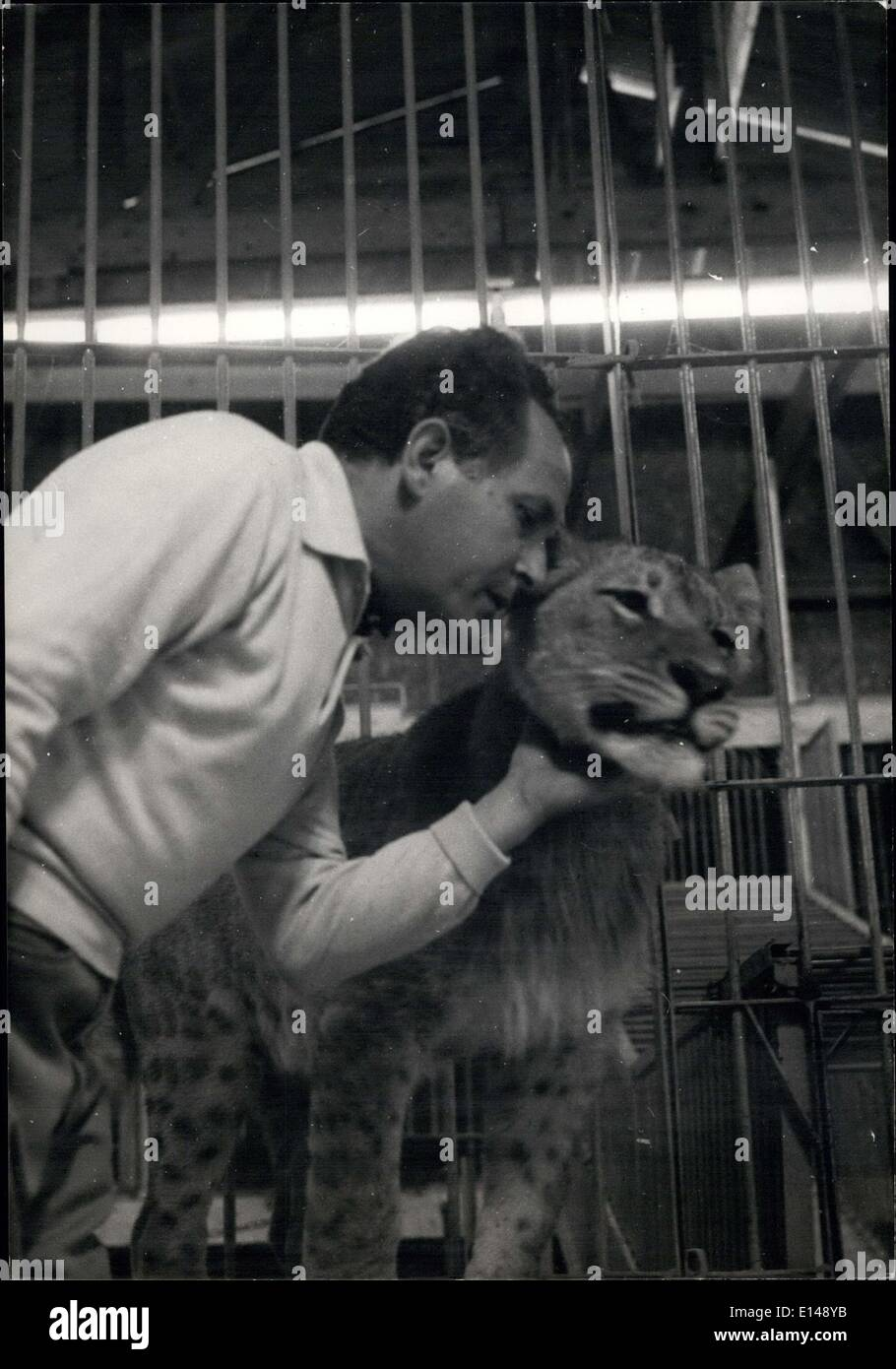 Apr. 17, 2012 - Trainer for the Circus talks closely with his Congoles spotted Lion - Stock Image
