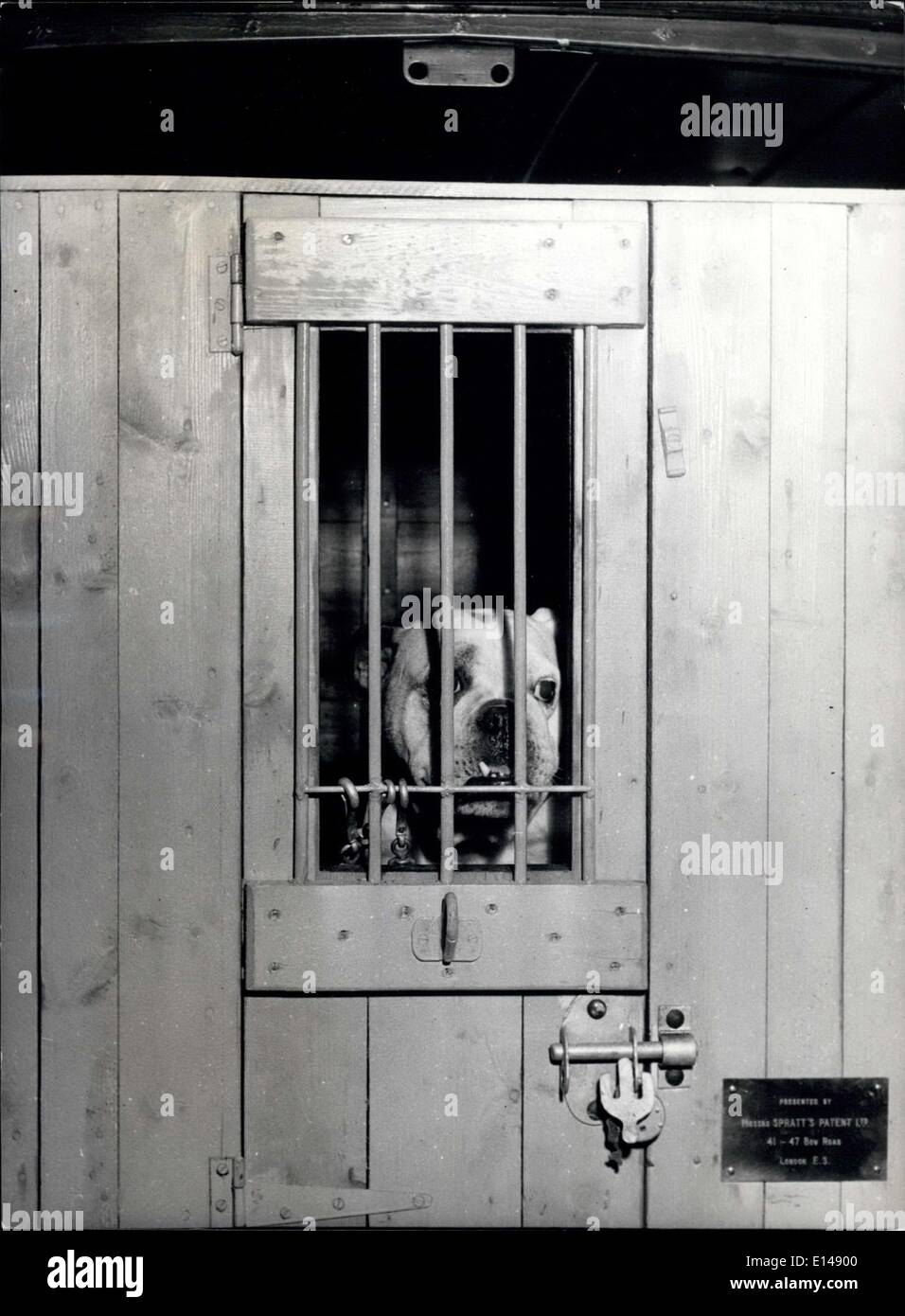 Apr. 17, 2012 - Chung is safe 'behind bars' until he is returned to his home and  owners: In the tailgger's lost dog service van, three is warm, comfortable a accommodation for several lost pets. - Stock Image