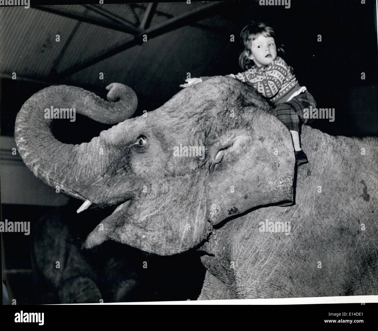 Apr. 18, 2012 - Who said elephants can't laugh: Yvonne knows Kam can. - Stock Image
