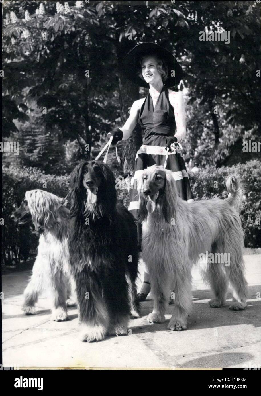 Apr. 12, 2012 - Marie Coper Royer & her afghan hounds - Stock Image