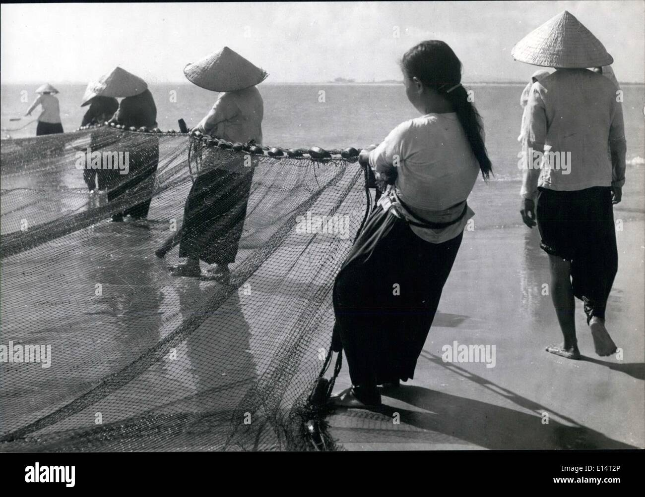 Apr. 18, 2012 - Vietnamese girl of Cap St. Jacques with a rope tied round her waist, helps pull in the heavy fishing nets. She gets a percentage of the fish caught as pay and sell them where she can find customers. - Stock Image