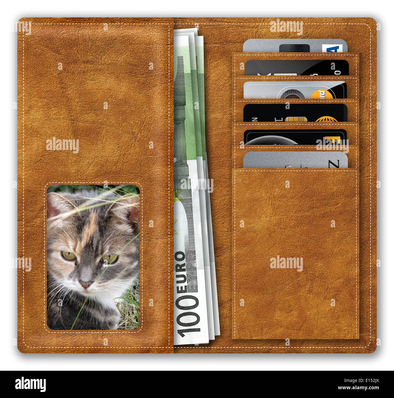 Wallet containing Euros and credit cards, with a female pet owner and cat, illustrating the cost of pet ownership. - Stock Image