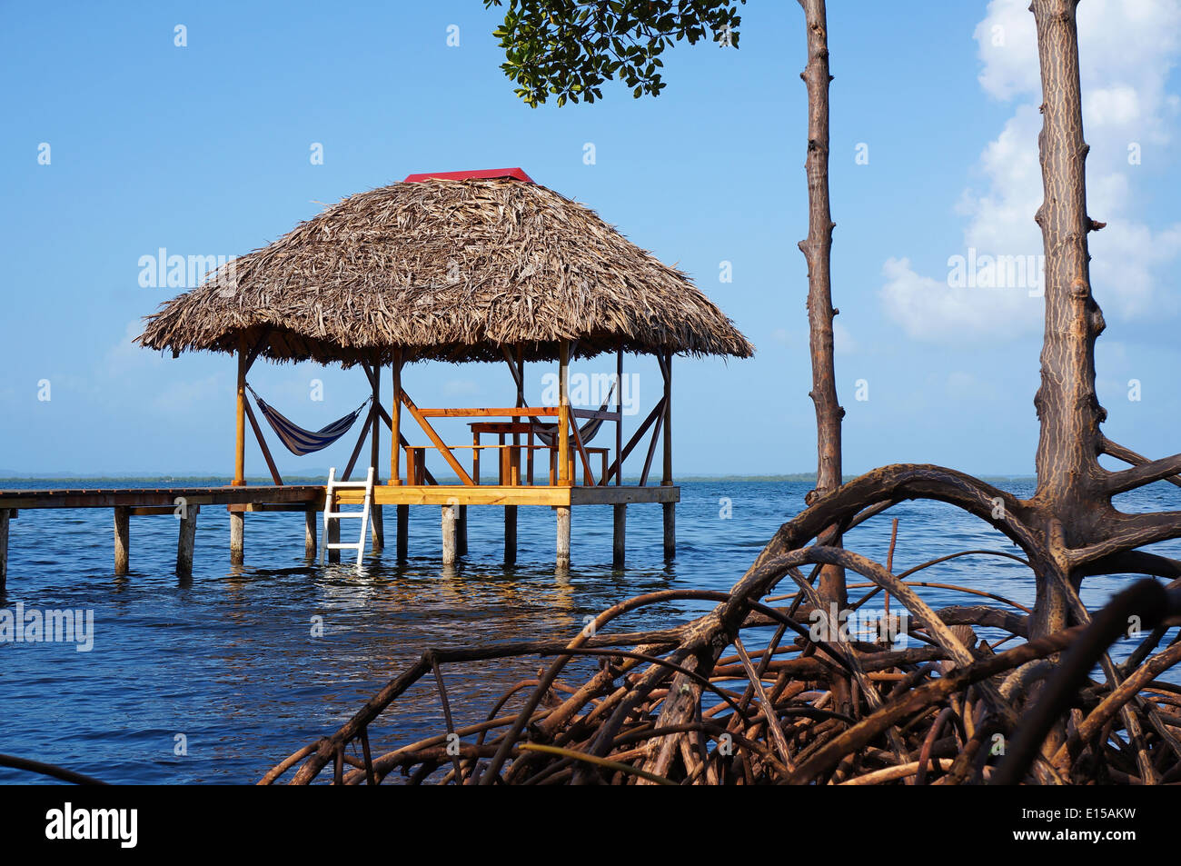 Thatched hut with hammock over the sea and mangrove tree roots in foreground - Stock Image