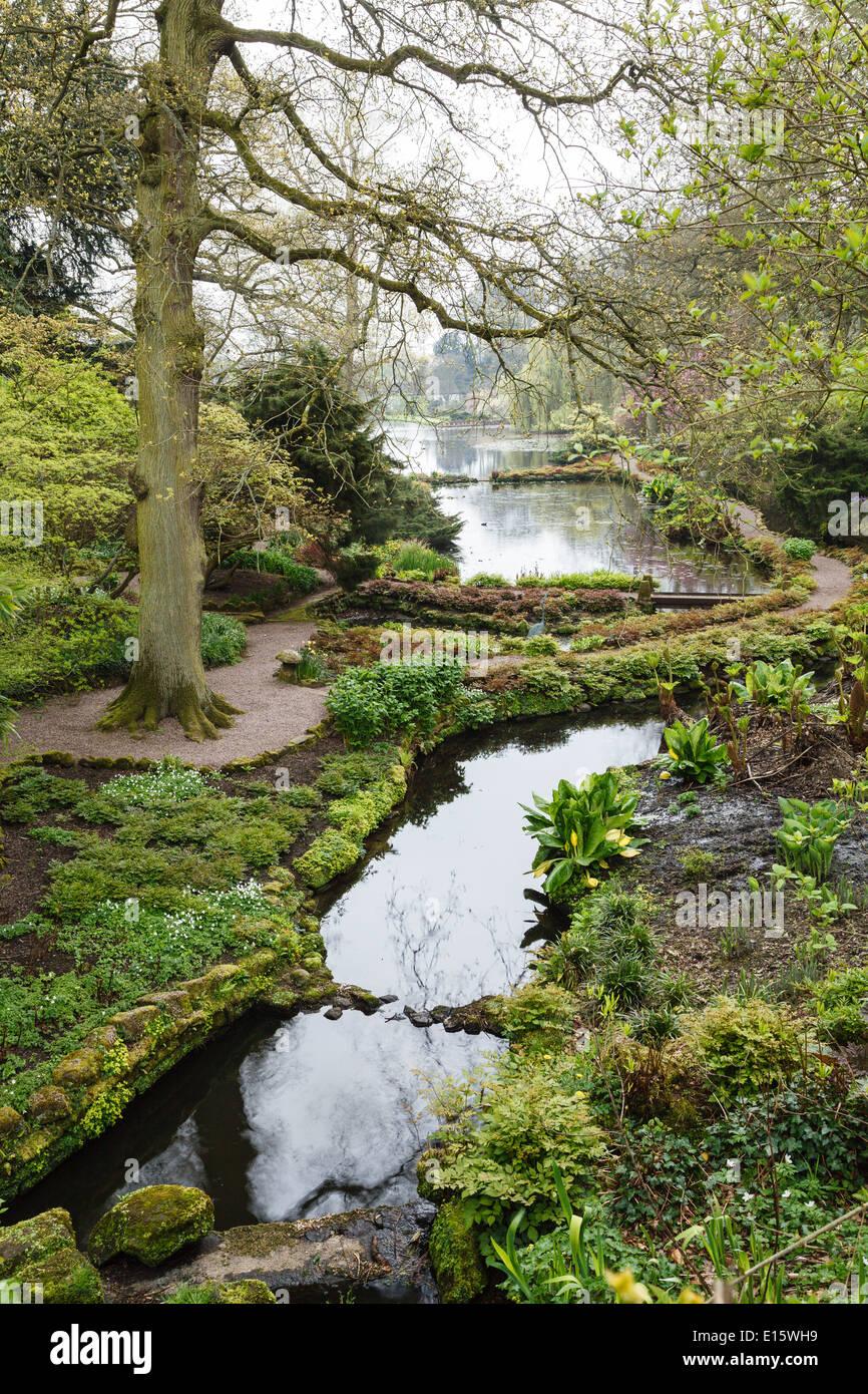 Hodnet Hall Gardens, Shropshire - Stock Image