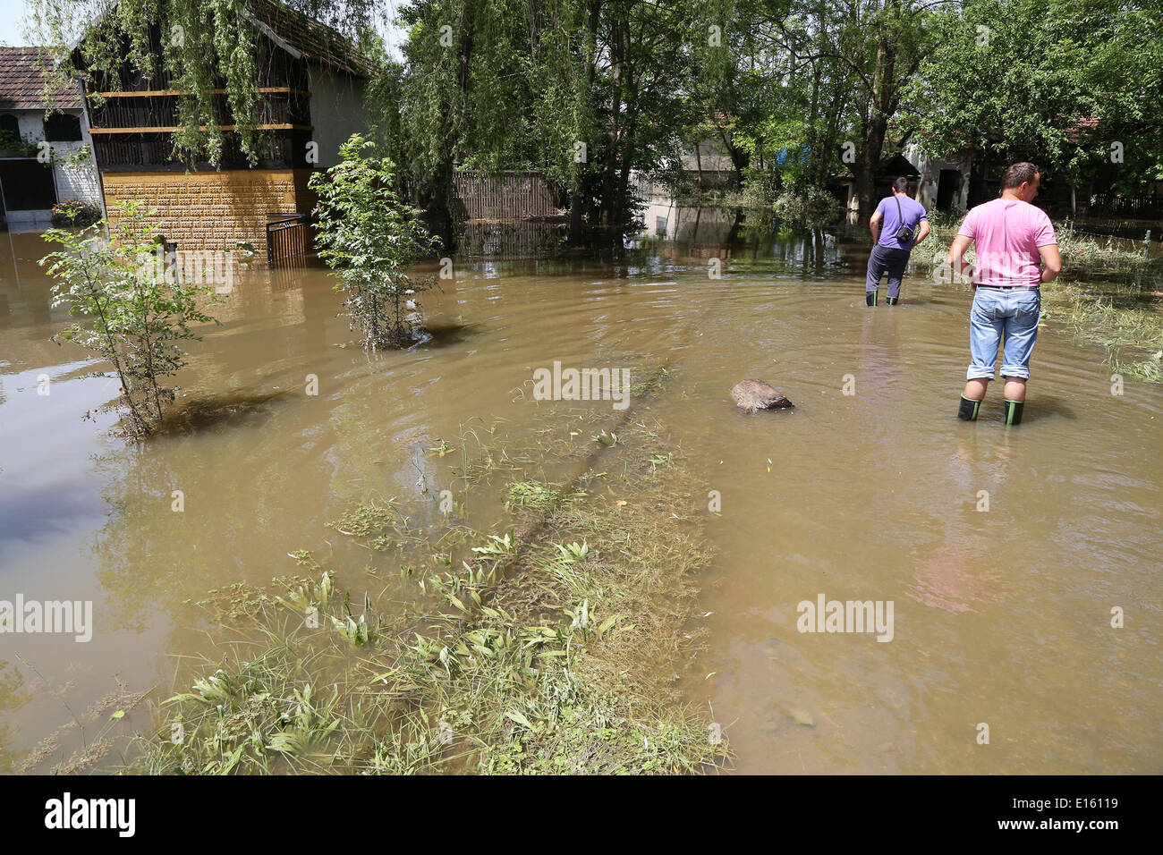(140523) -- ODZAK (BOSNIA AND HERZEGOVINA), May 23, 2014 (Xinhua) -- People walk in water near Odzak, Bosnia and Herzegovina, on May 23, 2014. The worst flooding in 120 years hit Bosnia and Herzegovina last week. (Xinhua/Haris Memija) - Stock Image