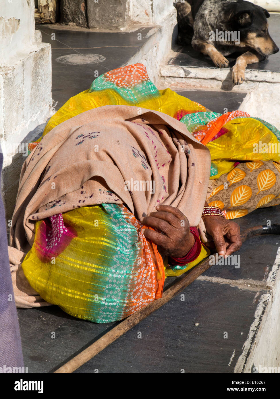 India, Rajasthan, Udaipur, Chandpole, old woman and dog asleep outside in sunshine - Stock Image