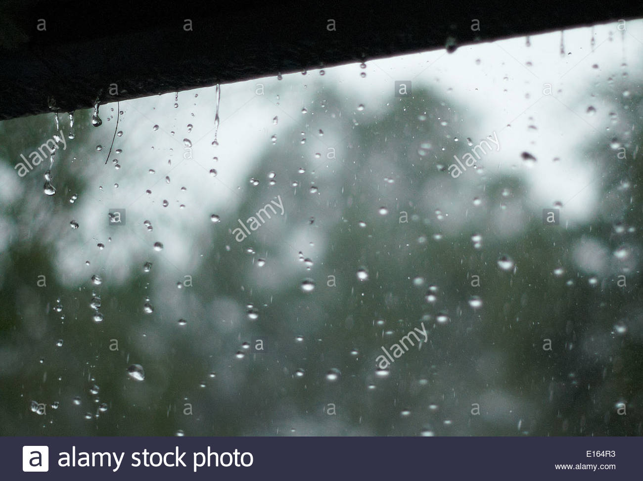 Rain drops falling from the eaves and gutters of a house, during a period of heavy rainfall - droplets frozen in mid-air, with blurred flora and sky. - Stock Image