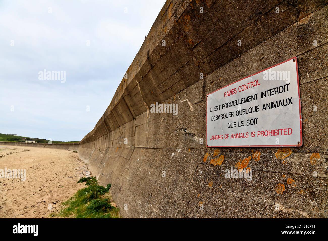 9120. German anit-tank defenses WW2, Longis Bay, Alderney, Channel Islands, UK, Europe - Stock Image