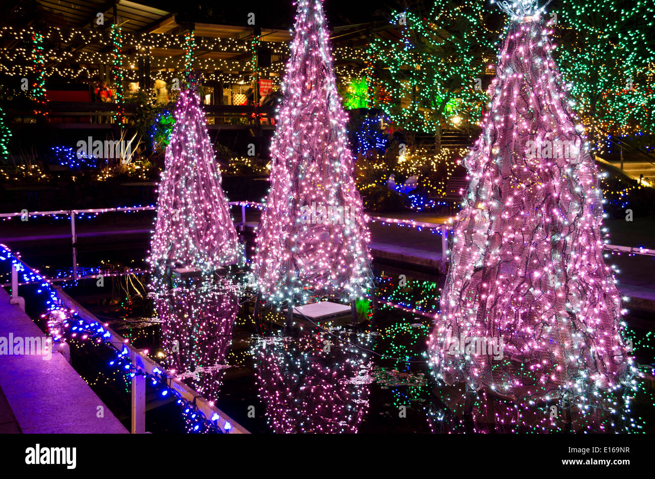 High Quality Beautiful Christmas Tree Lights And Other Holiday Illuminations At VanDusen  Botanical Garden In Vancouver, BC, Canada