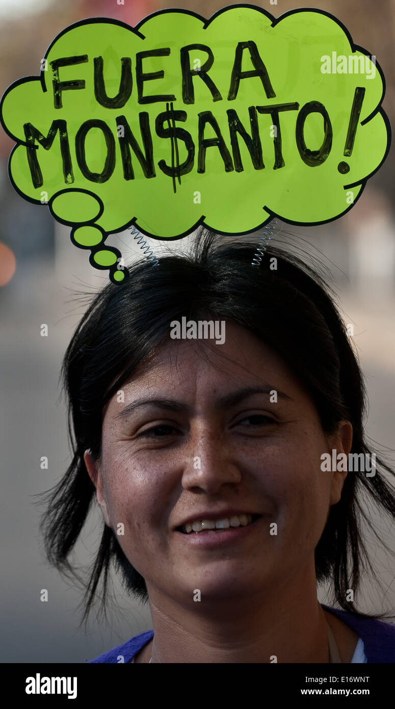 Santiago, Chile. 24th May, 2014. A woman takes part in a protest in Santiago, capital of Chile, on May 24, 2014. Activists from all around the world rallied on Saturday during a global protest day against the transgenic company Monsanto, demanding the support to local farmers and the protection of the food supply. © Jorge Villegas/Xinhua/Alamy Live News - Stock Image