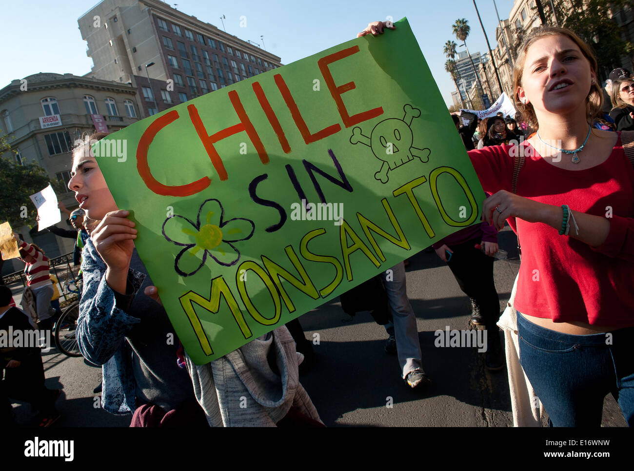 Santiago, Chile. 24th May, 2014. People take part in a protest in Santiago, capital of Chile, on May 24, 2014. Activists from all around the world rallied on Saturday during a global protest day against the transgenic company Monsanto, demanding the support to local farmers and the protection of the food supply. © Jorge Villegas/Xinhua/Alamy Live News - Stock Image