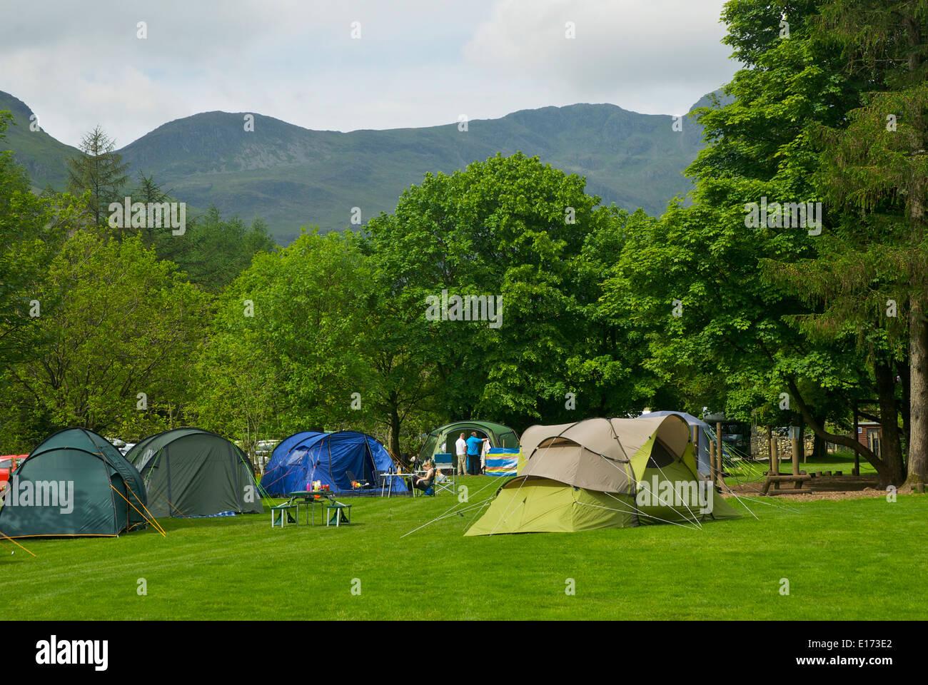 Great Langdale Campsite, Lake District National Park, Cumbria, England UK - Stock Image