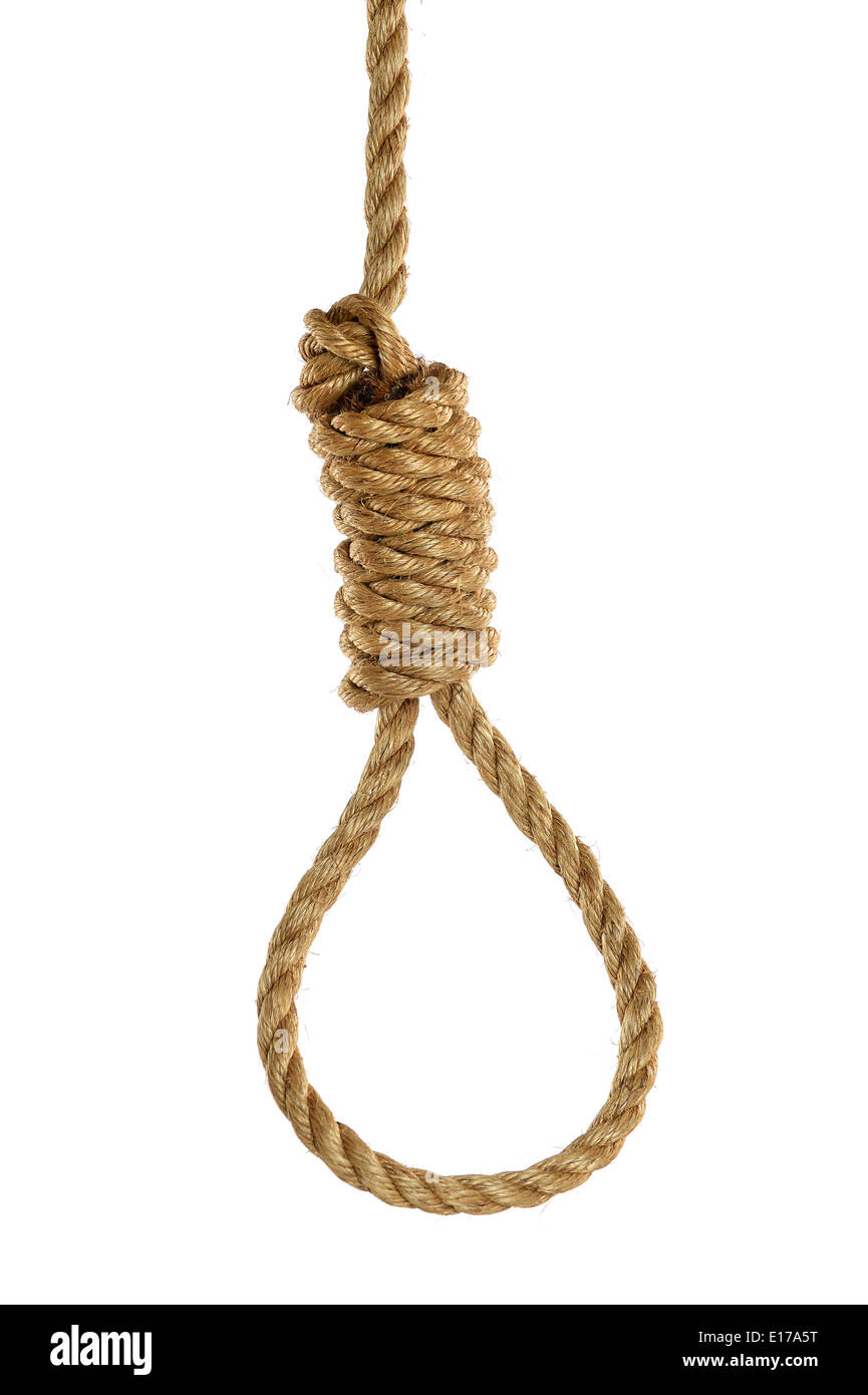 Rope noose isolated over white background - Stock Image