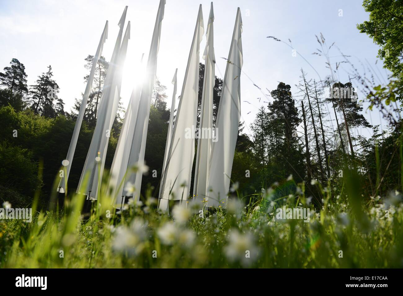 Bringhausen, Germany. 21st May, 2014. The sun shines through the land art object Windturm (wind tower) by artist Reta Reinl in Kellerwald-Edersee National Park near Bringhausen, Germany, 21 May 2014. The national park is celebrating its tenth birthday this year. Photo: Uwe Zucchi/dpa/Alamy Live News - Stock Image