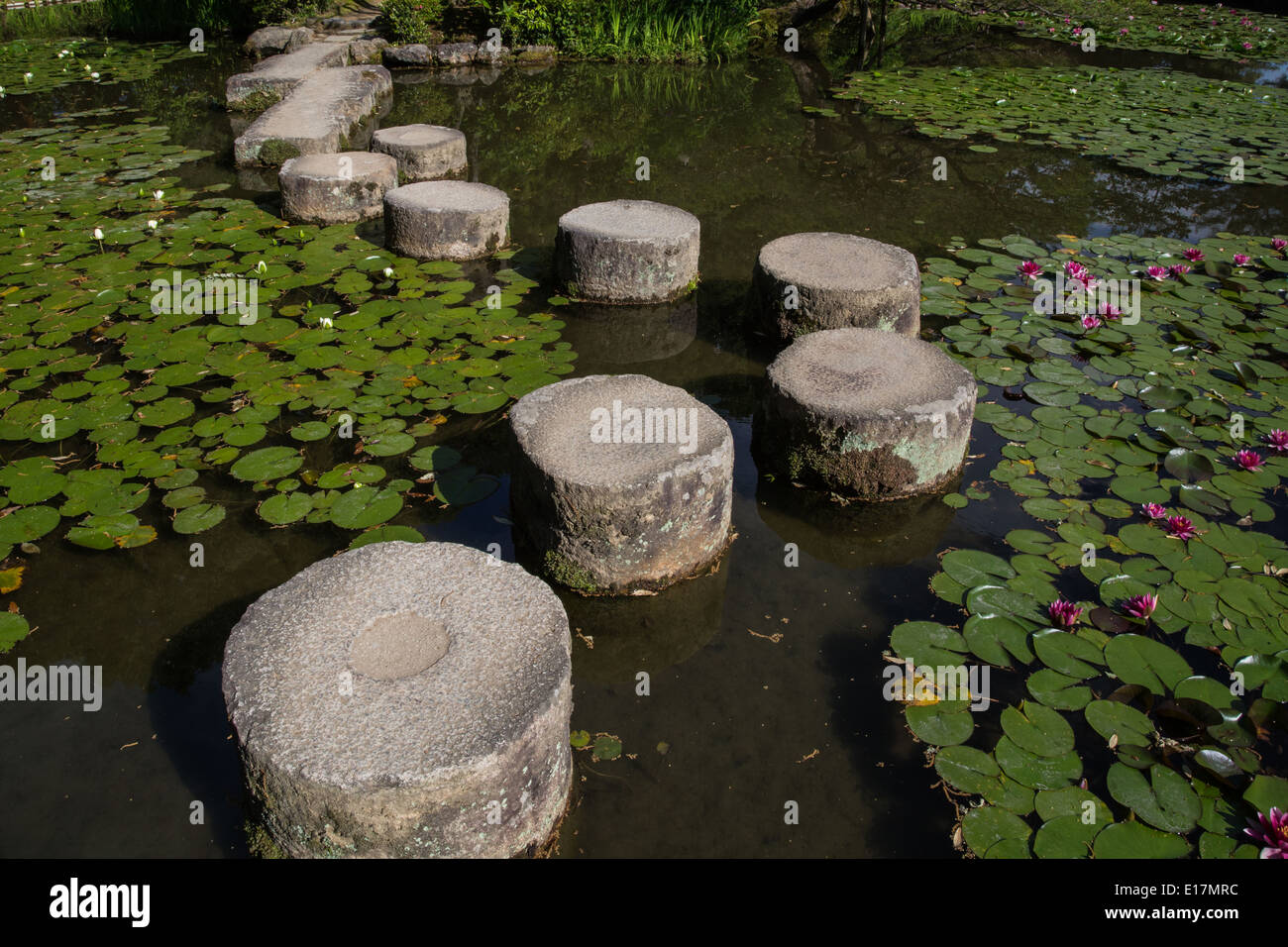 Stepping stones are called tobi-ishi in Japanese, literally skipping stones or flying stones. - Stock Image