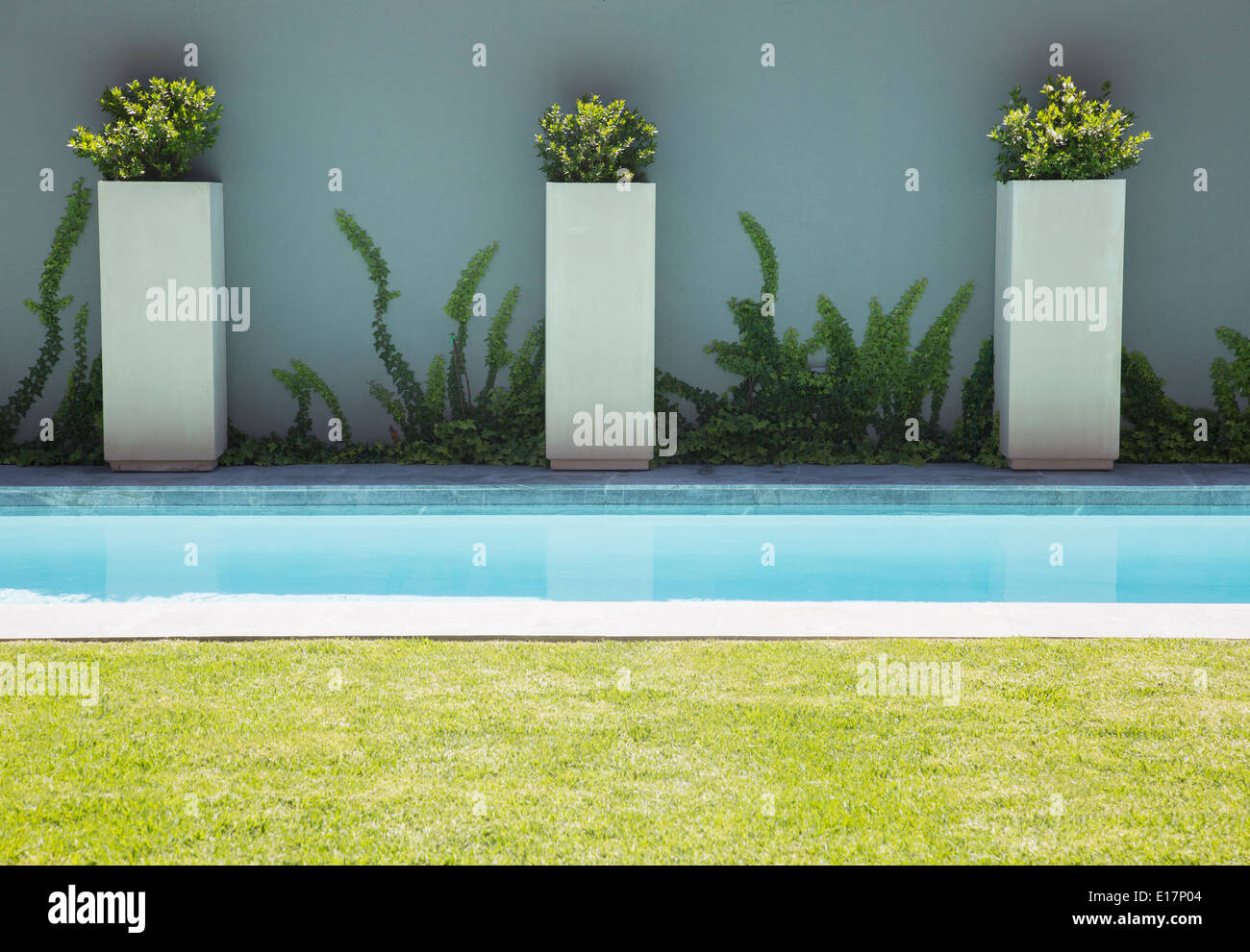 Modern lap pool - Stock Image