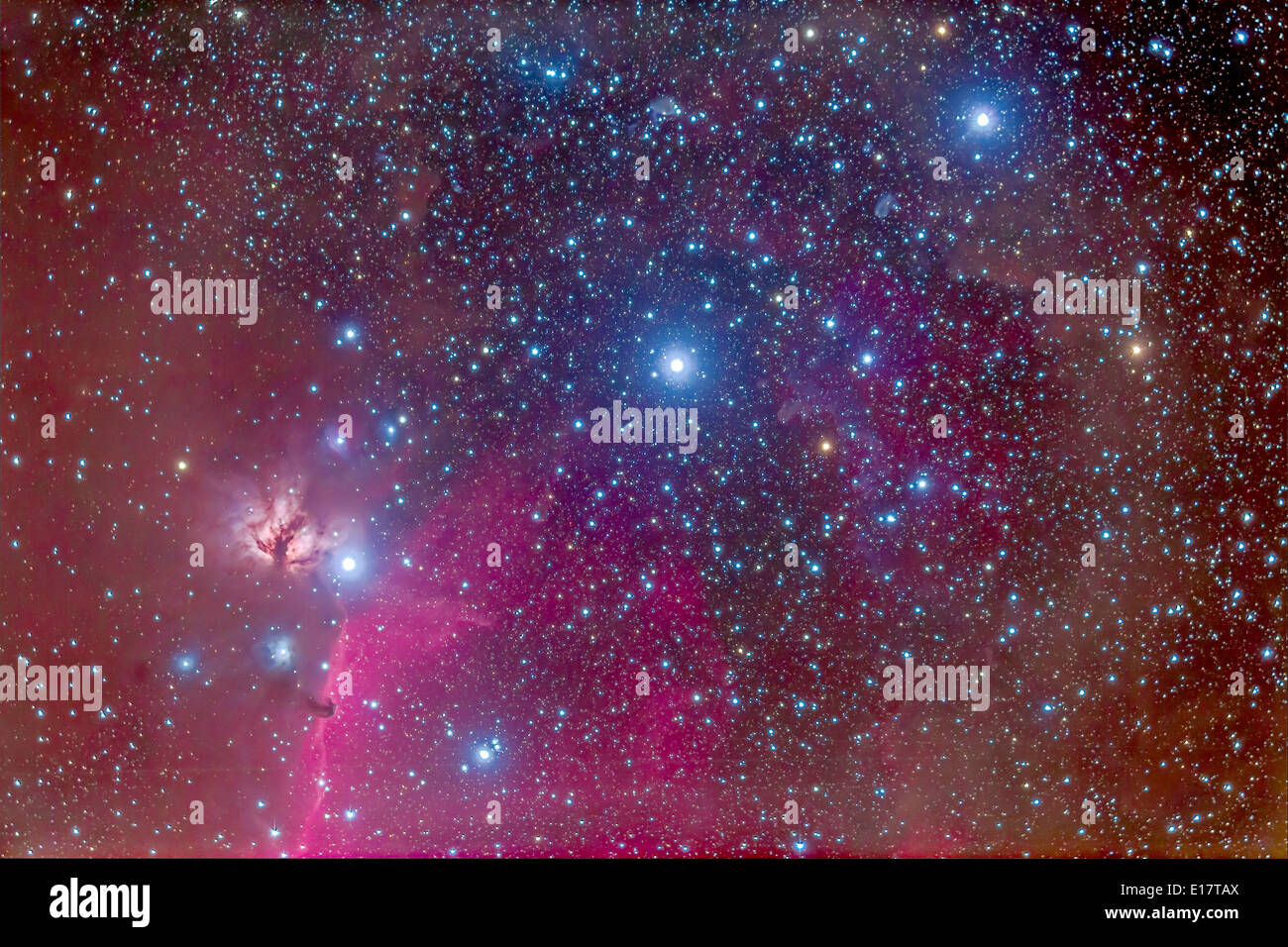 The Belt of Orion, enmeshed in nebulosity, emission and reflection, including the famous Horsehead Nebula - Stock Image