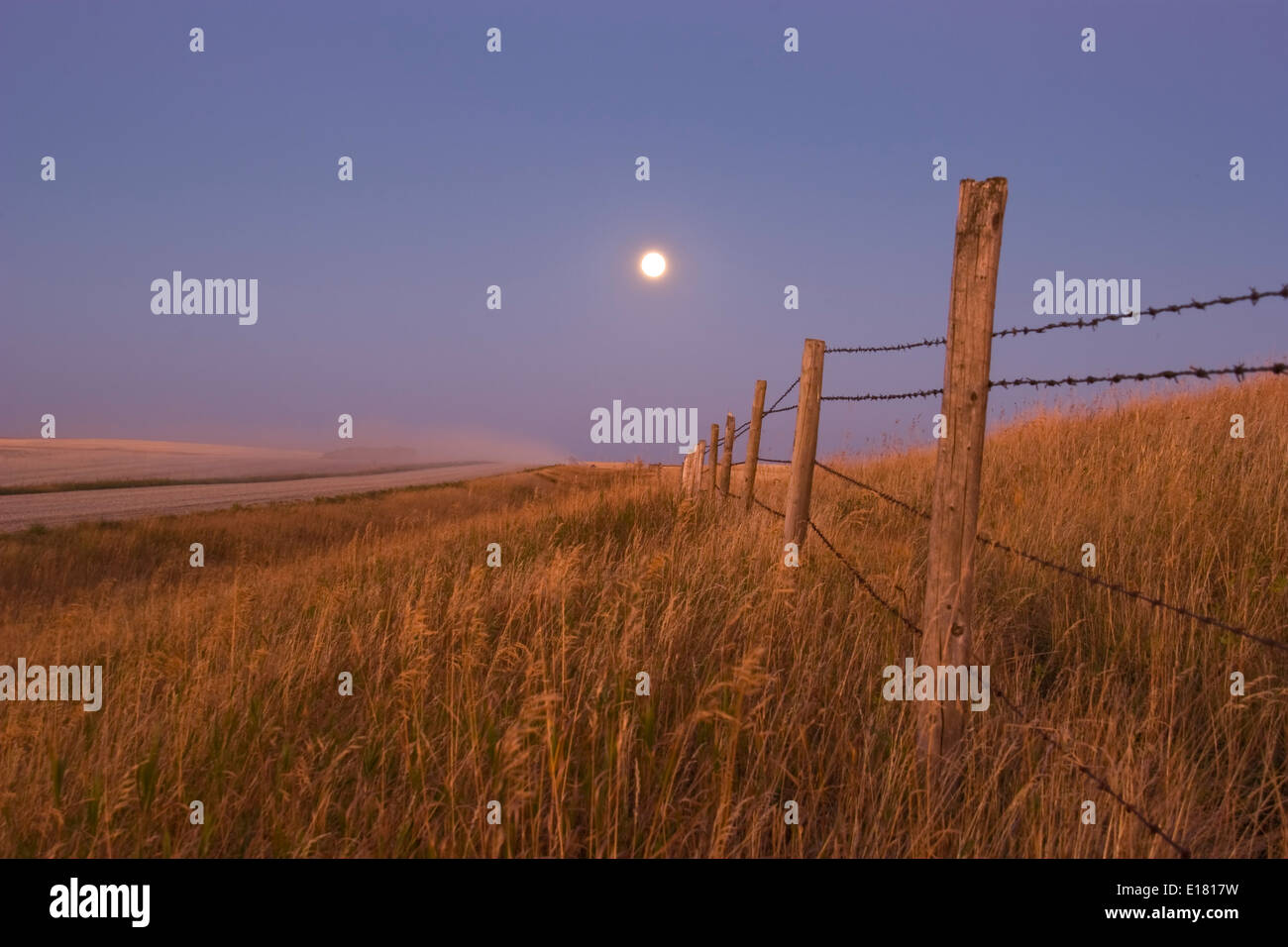 Harvest Moon down the road. Canon 20Da with 18-200 mm lens at 42mm at f/11 for 2.5 seconds. - Stock Image