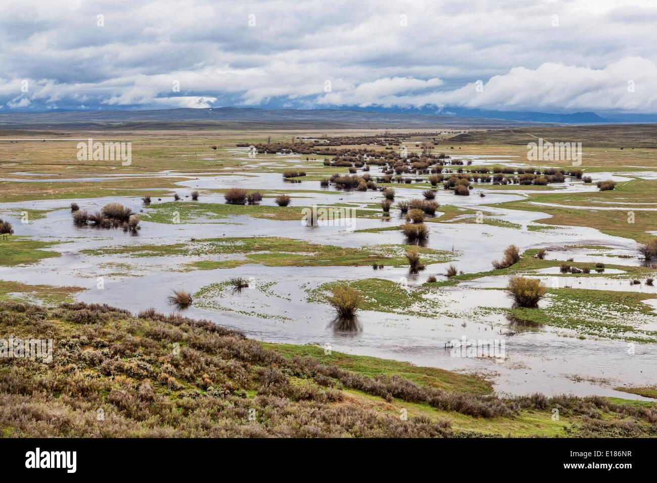 Illinois River meanders through Arapaho National Wildlife Refuge, North Park near Walden, Colorado - Stock Image