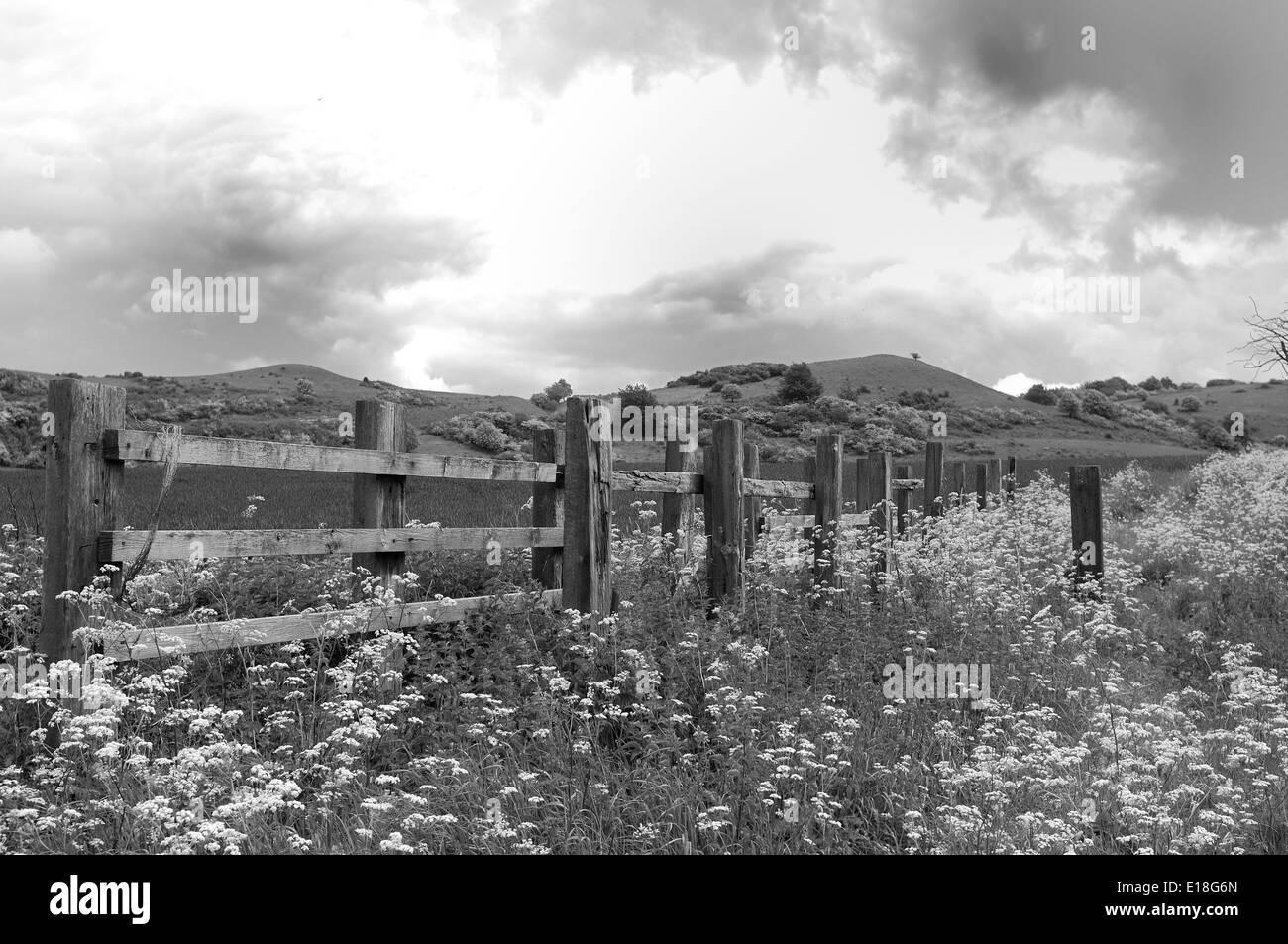 Ivinghoe Hills, Buckinghamshire - Stock Image