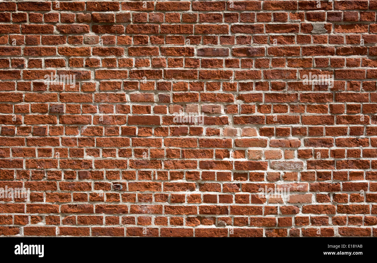 English Bond brick wall - Stock Image
