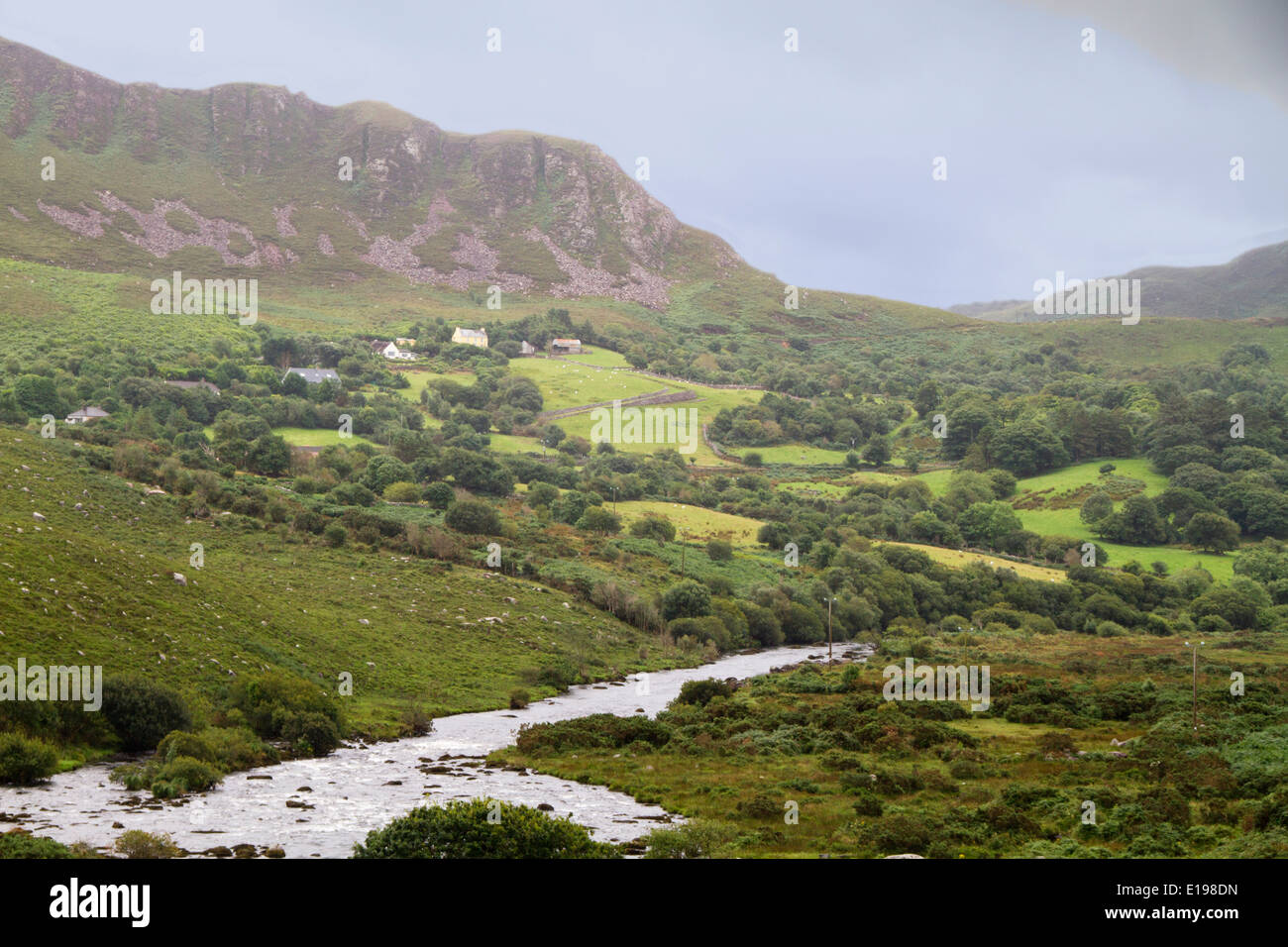 Farms and sheep grazing on the rugged terrain of the Right of Kerry Killarney,Ireland - Stock Image