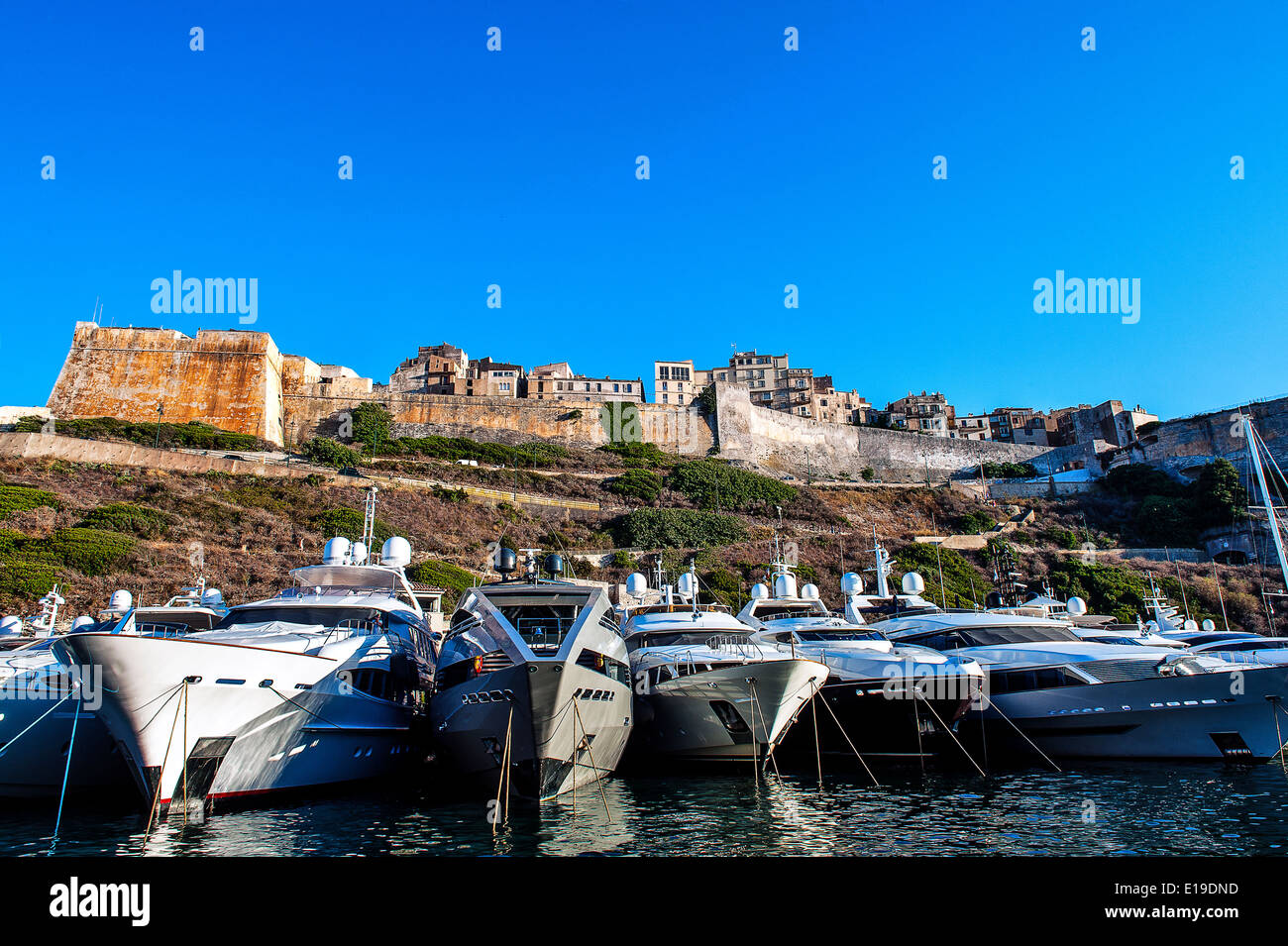 Europe, France, Corse-du-Sud (2A), Bonifacio. Cruise ships in a Marina front of the ramparts. - Stock Image
