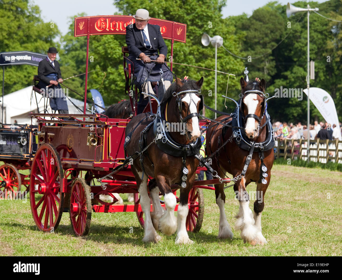 Stocksfield, England - May 26, 2014: Entrants in the pairs section of the Heavy Horses Turnout displaying in the main arena at the Northumberland County Agricultural Show at Bywell Hall, near Stocksfield, in North east England. Agriculture is an important part of the economy in the region and such events shows draw large numbers of visitors. - Stock Image