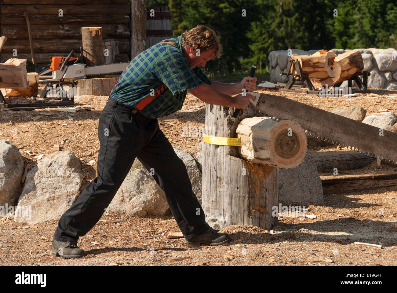 Elk203-1024 Canada, British Columbia, Vancouver, Grouse Mountain, lumberjack log sawing demonstration - Stock Image
