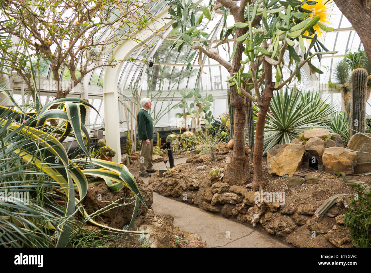 Phipps Conservatory Pittsburgh PA Stock Photo: 69666952 - Alamy