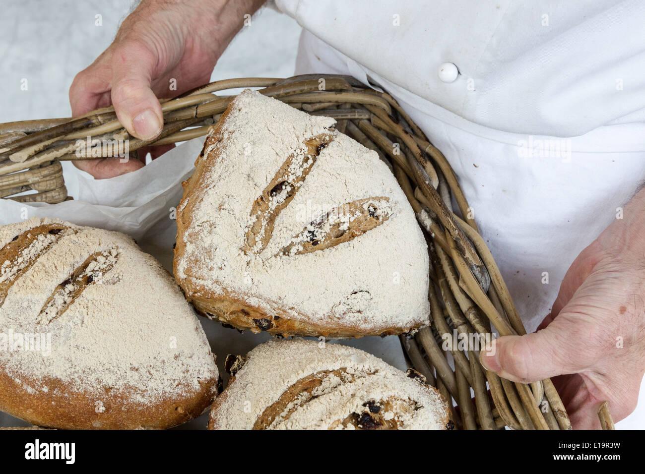 baker holding basket of freshly baked bread - Stock Image