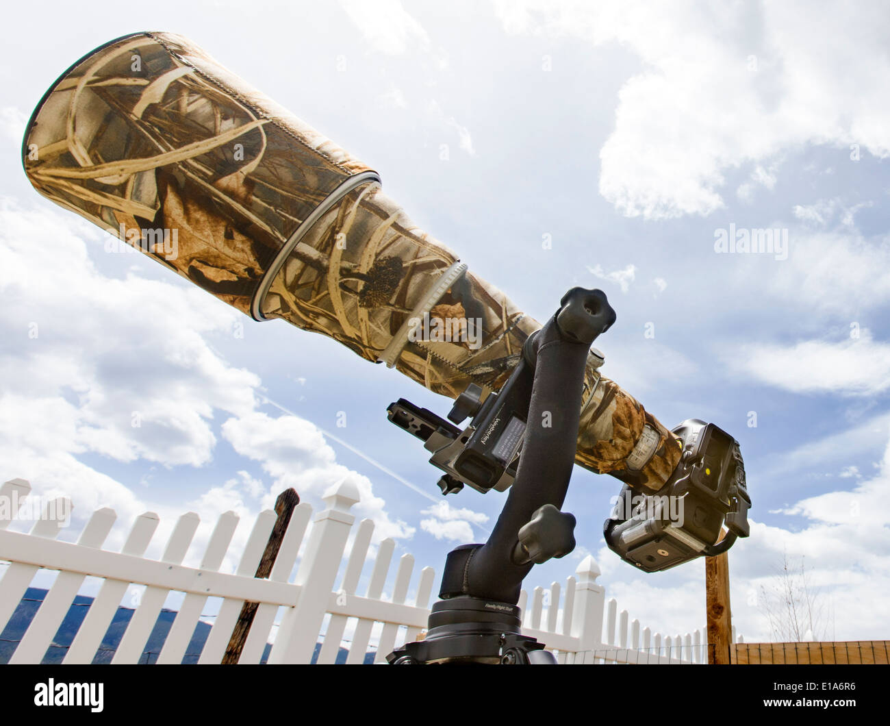 Large telephoto lens w camouflage cover, professional digital camera & tripod - Stock Image