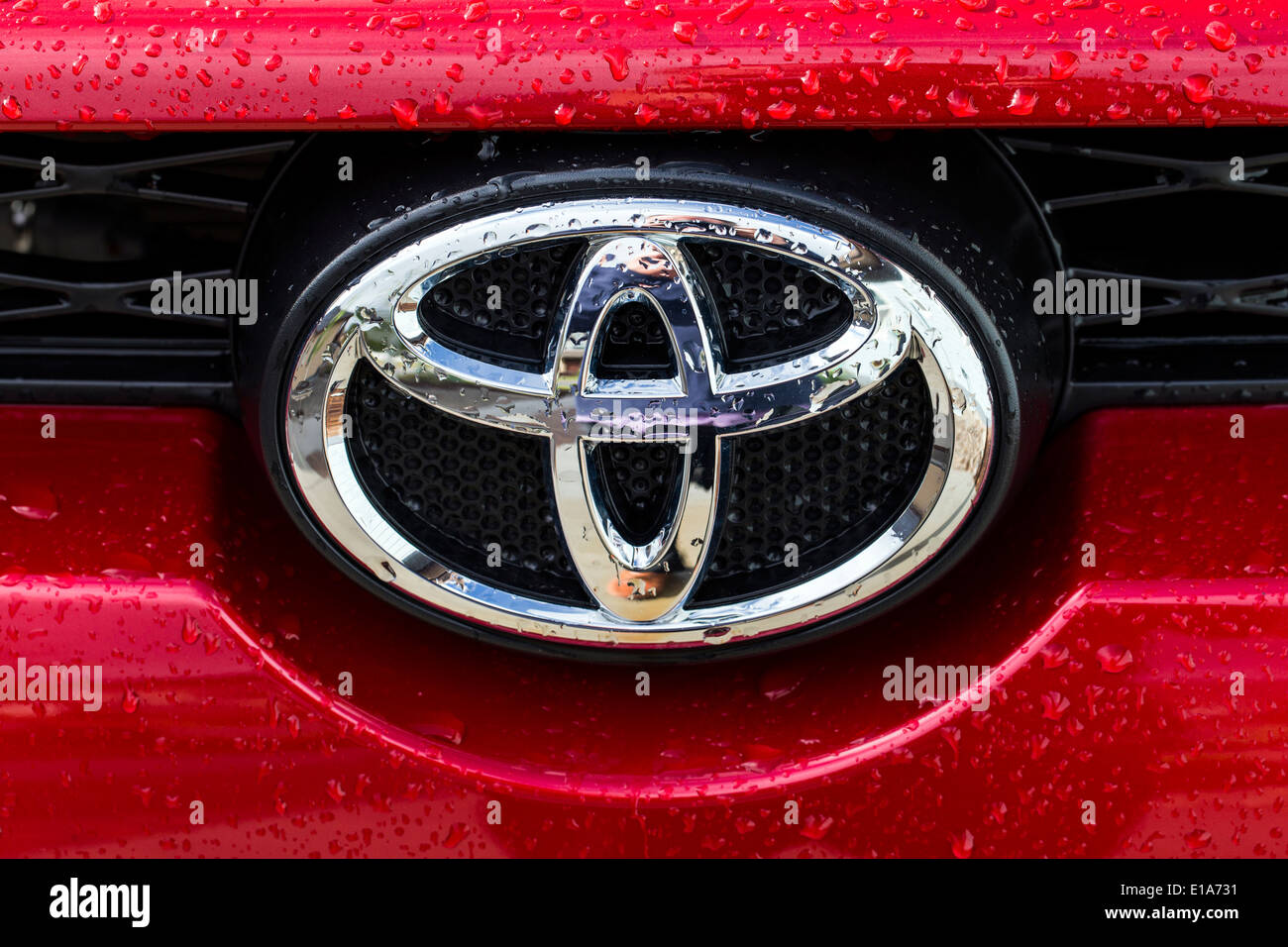 Beads of rain water droplets on red Toyota 4Runner truck and logo - Stock Image