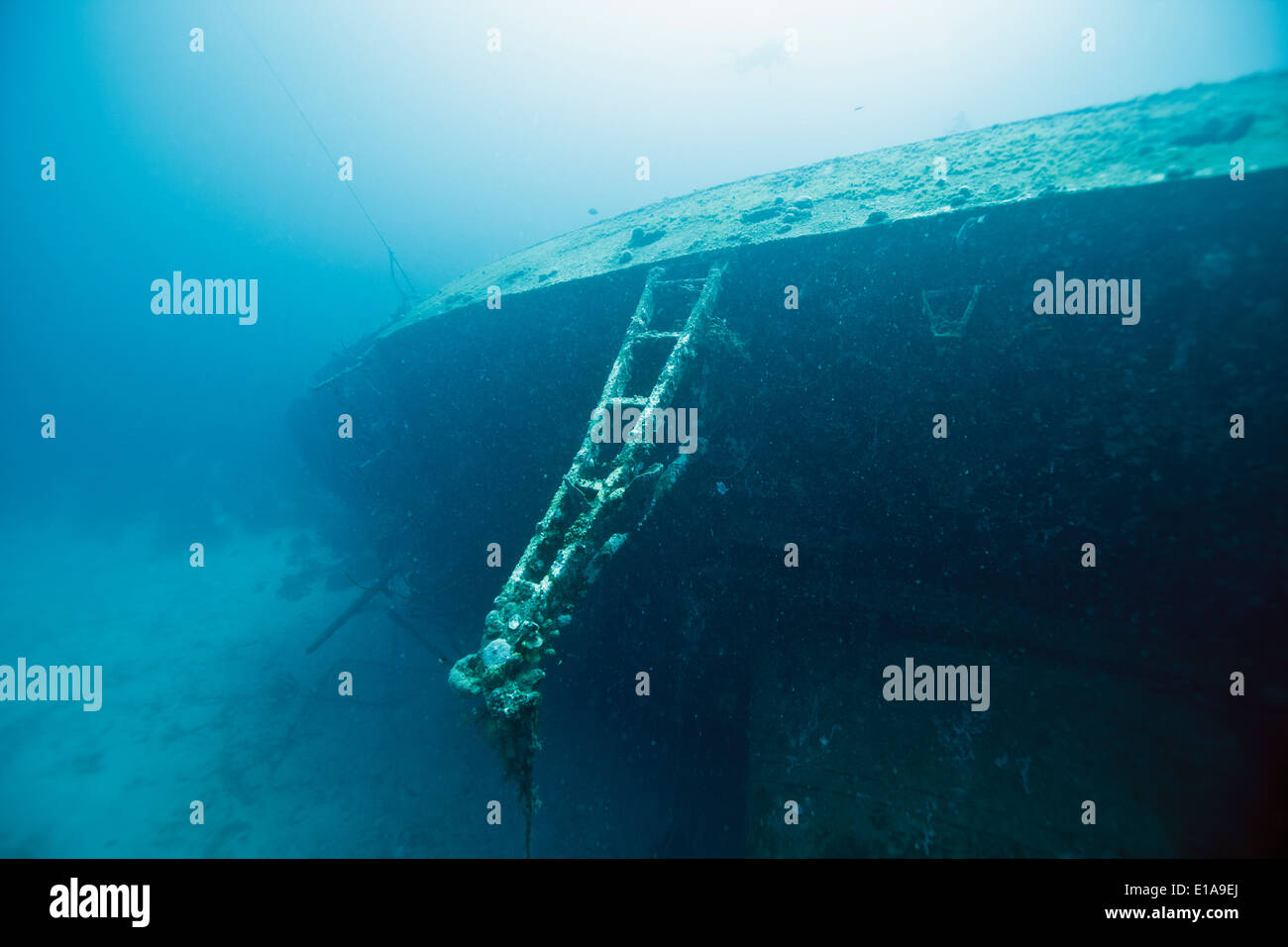 The Hilma Hooker is a shipwreck in Bonaire in the Caribbean Netherlands. It is a popular wreck diving site. Photo V.D. Stock Photo