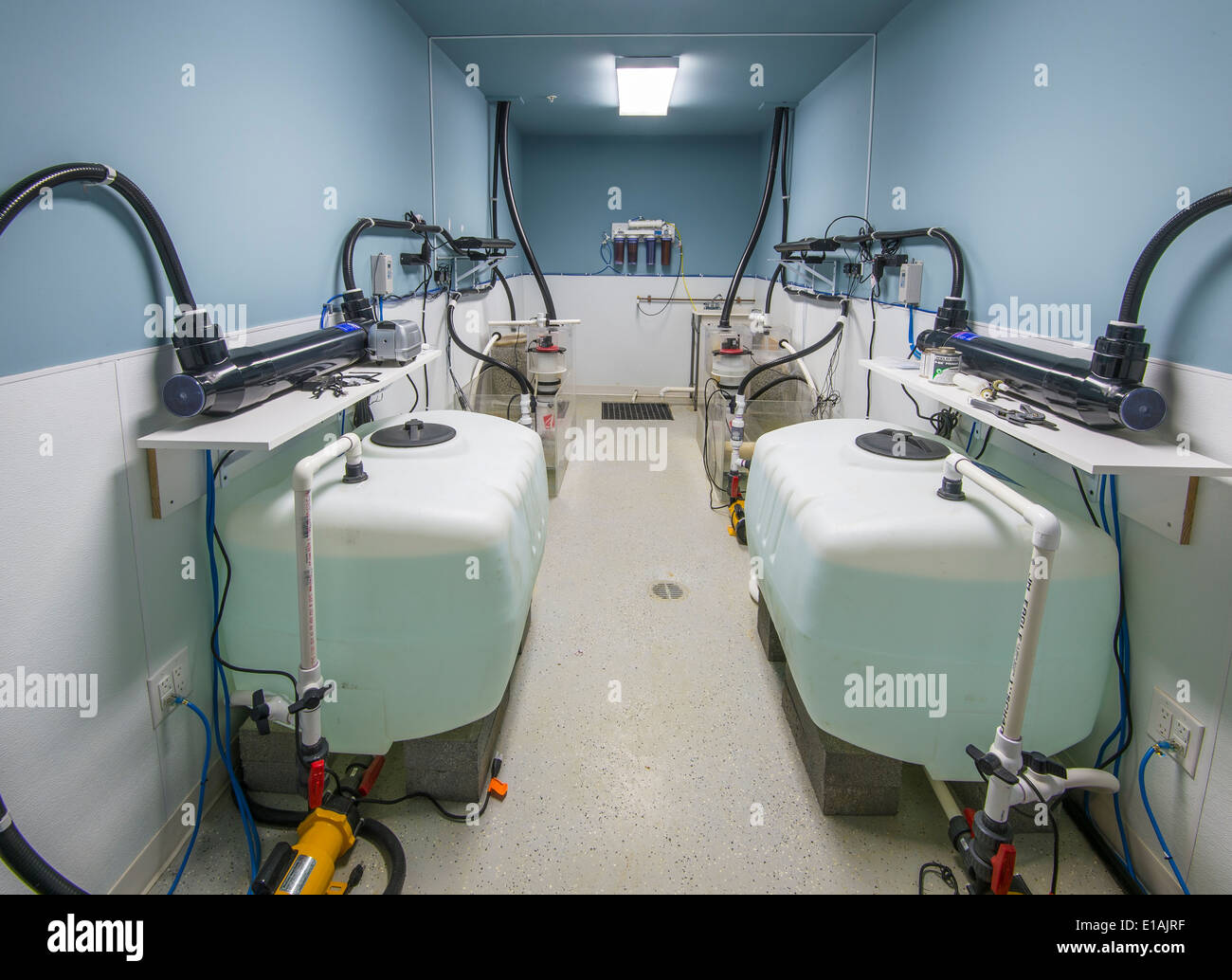Salt Water Aquarium Equipment Support Room - Stock Image