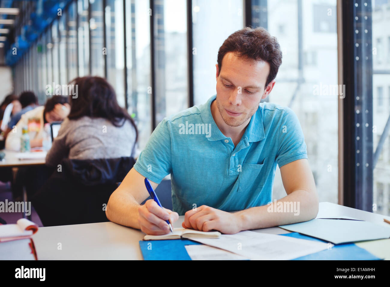 student working in the library - Stock Image