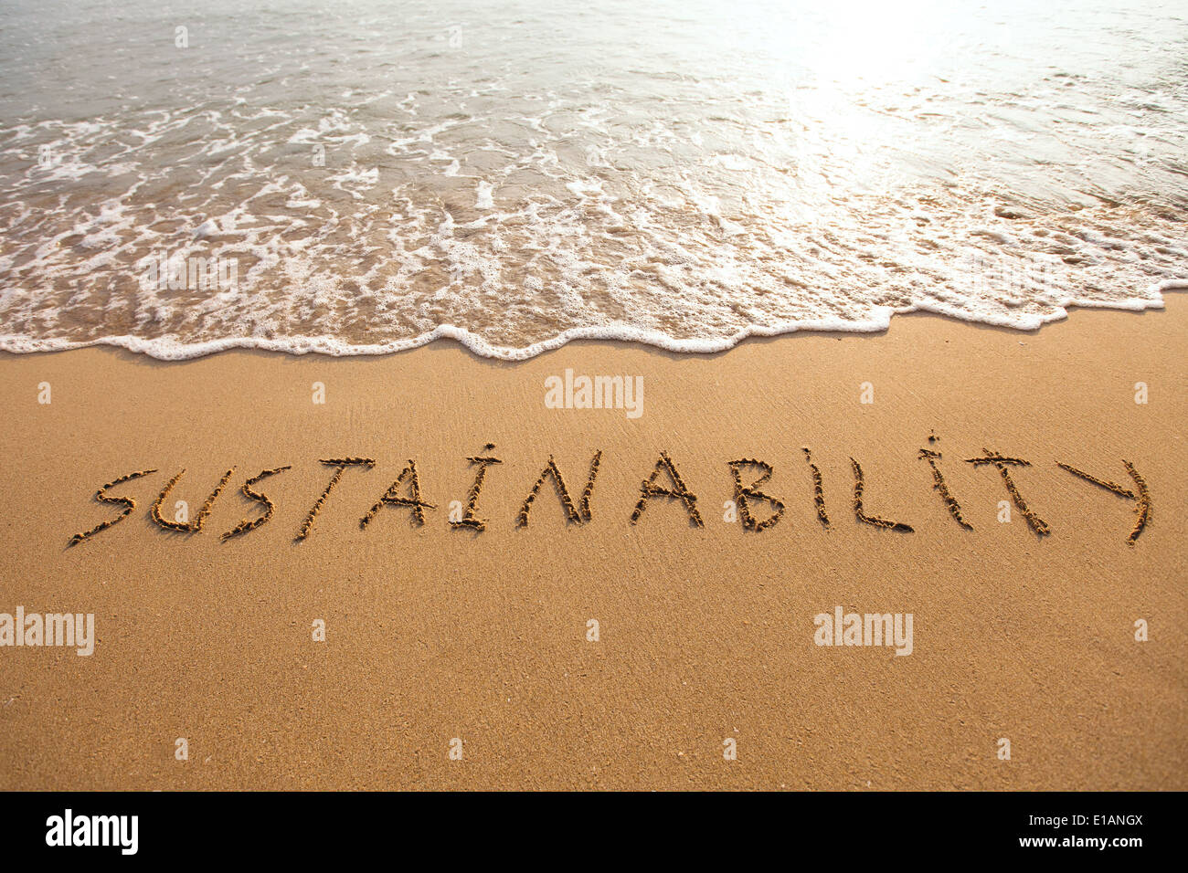 sustainability concept - Stock Image