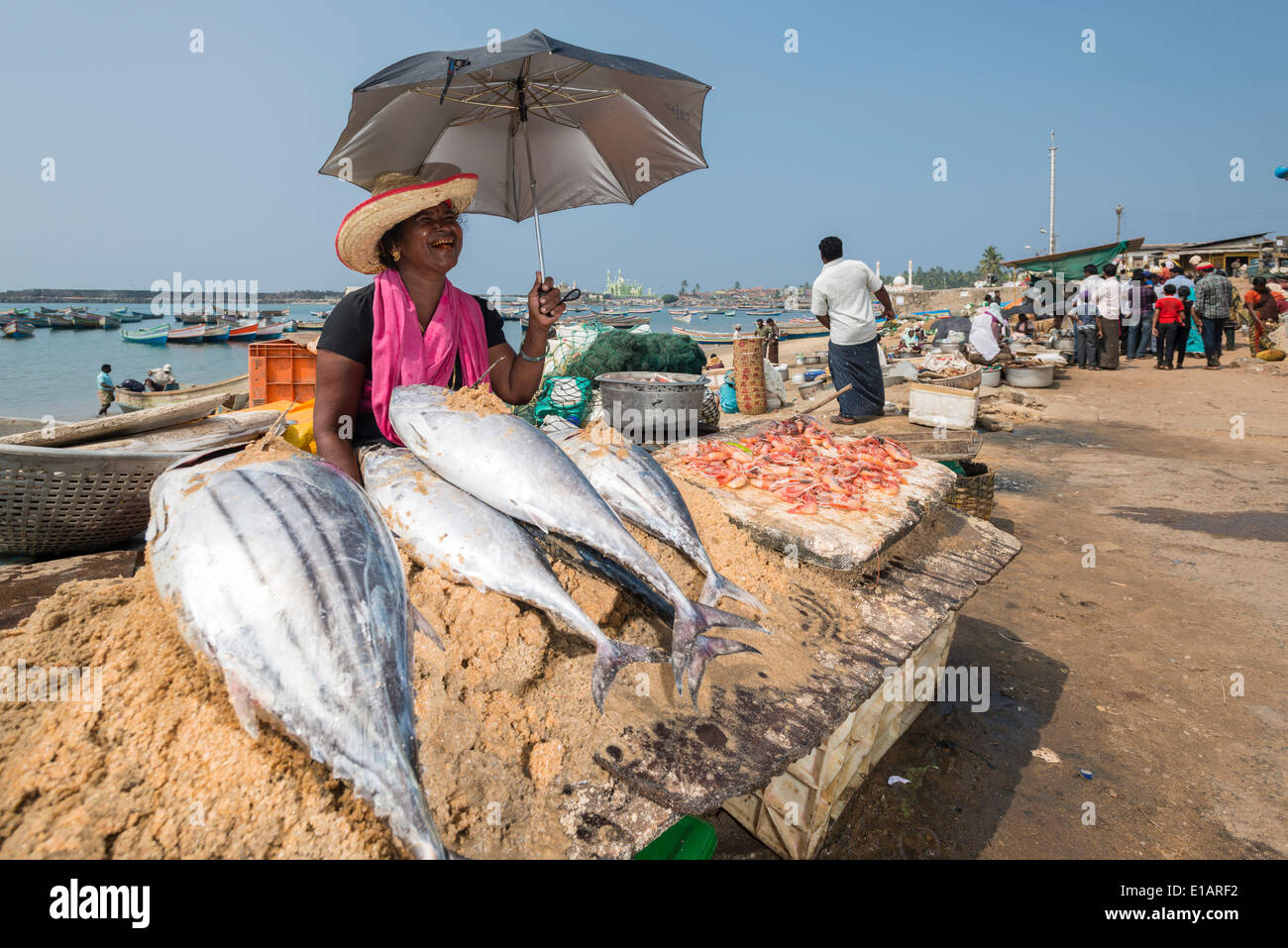Woman selling fish, Vizhinjam, Kerala, India - Stock Image